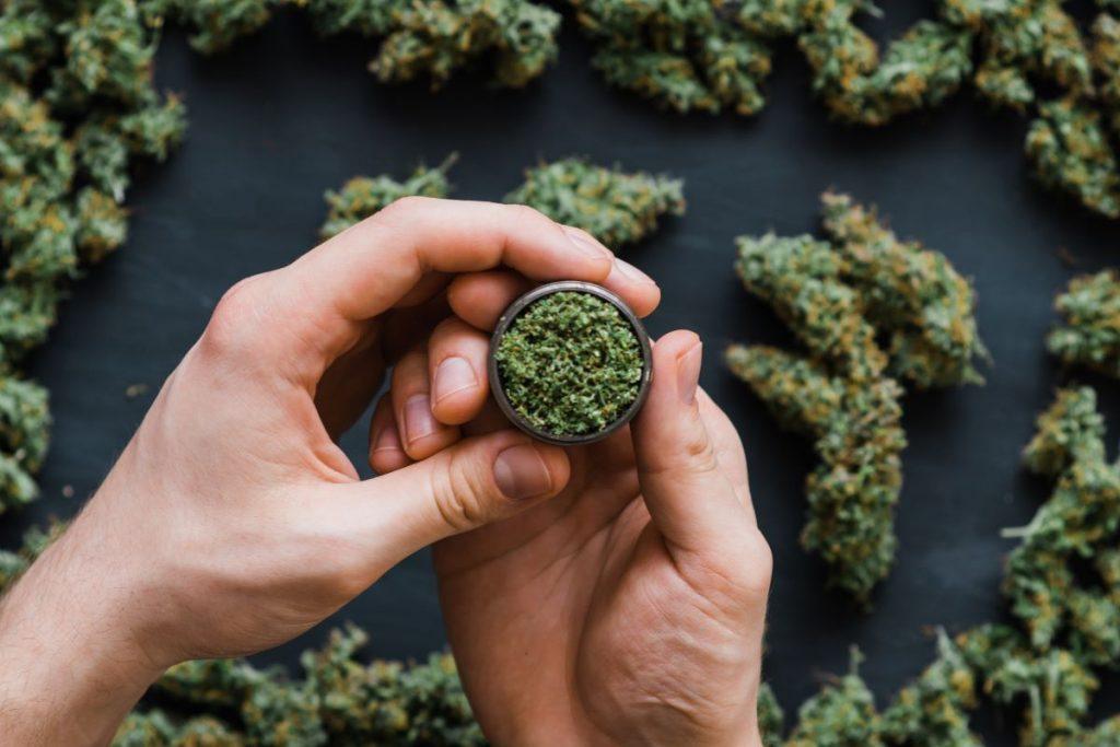 Cannabis Shakes