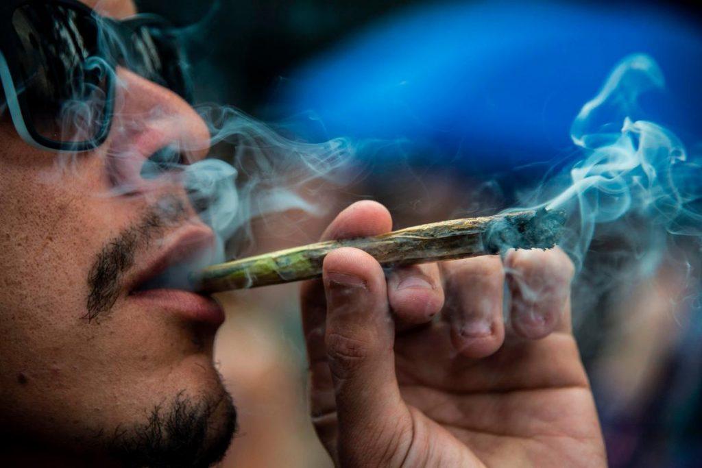 cannabis shake